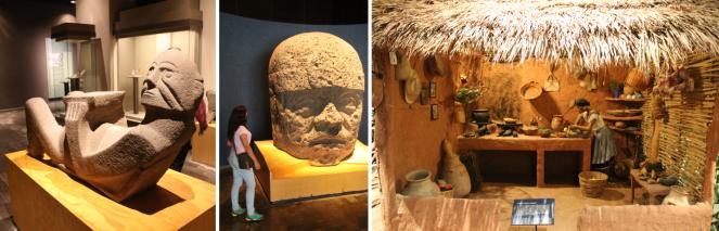 musée anthro